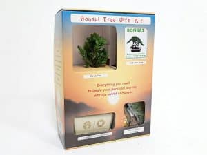 Bonsai Tree Starter Kit #10000