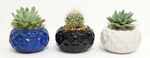 Geodesic Ball Vase
